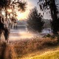 Foggy Dreamworld by Ronald Kotinsky