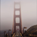 Foggy Golden Gate by Tommy Anderson