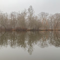 Foggy Lagoon Reflection #5 by Dan Farmer