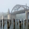 Foggy Morning by Dan Leffel