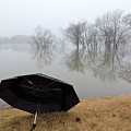 Foggy Morning by Delana Epperson