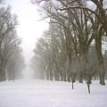 Foggy Morning Landscape 4 by Steve Ohlsen