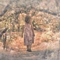 Foggy Morning Light by Mary Lou Chmura