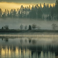 Foggy Morning On The Pend Oreille River by Albert Seger