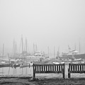 Foggy Morning On The Sea by Vic Bouchard