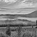 Foggy Morning by Rodney Cammauf