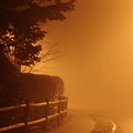Foggy Night In White Plains Ny 2006 04 by Ericamaxine Price