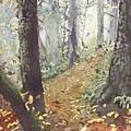 Foggy Path by Jenny Armitage