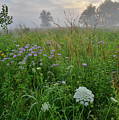 Foggy Prairie In Glacial Park In Mchenry County by Ray Mathis