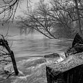 Foggy River by Aaron Shortt