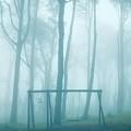 Foggy Swing by Carlos Caetano