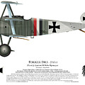 Fokker Dr.1 - 214/17 - March 1918 by Ed Jackson
