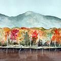 Foliage by Brenda Owen