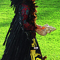Folk Costume In Mexico 2 by Randall Weidner
