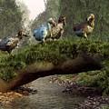 Follow The Dodo by Daniel Eskridge