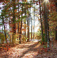 Follow The Path by Jeff Folger