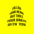 Follow Your Heart And Brain 5484.02 by M K Miller