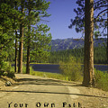 Follow Your Own Path by Sherri Meyer