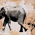 Following Mum - Mother And Baby Elephant Animal Decorative Poster  4 - By Diana Van by Diana Van