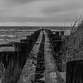 Folly Beach Anti Erosion Pier by Dale Powell