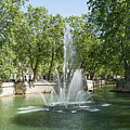 Fontaine De Nimes by Scott Carruthers