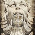 Fontana Del Pantheon 2 by Toni Abdnour