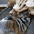 Fontana Della Barcaccia Sun by Alan Zeleznikar