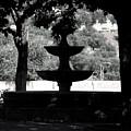 Fontana by Jez C Self