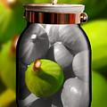 Food Fruit Figs 1 by Caroline Peklivana