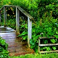 Foot Bridge And Fence by Richard Jenkins