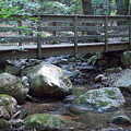 Foot Bridge Over Notch Brook by Catherine Gagne