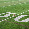 Football On The 50 Yard Line by Bill Cannon