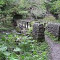 Footbridge At Millers Dale by Rod Johnson