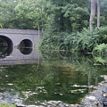 Footbridge Buckeye Falls by Patricia R Moore