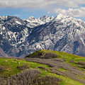 Foothills Above Salt Lake City by Utah Images