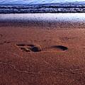Footprint by Tim Beebe