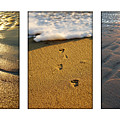 Footprints In The Sand by Jill Reger