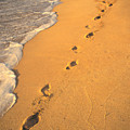 Footprints by Mary Van de Ven - Printscapes