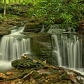 Forbes State Forest Twin Falls by Adam Jewell