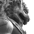 Forbidden City Lion - Black And White by Carol Groenen