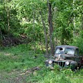 Ford - Found On Road Dead by Betty Northcutt