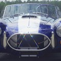 Ford Cobra by Margaret Fortunato