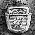 Ford Emblem On A Rusted Hood Verticle by Matthew Pace