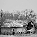 Forest Avenue Barn Bw by Bonfire Photography