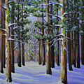Forest Cathedral by Jane Lufkin