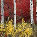 Forest Color by Leland D Howard