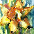 Forest Daffodil In Rain by Jacki Kellum