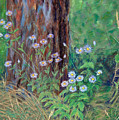 Forest Flowers by Marina Garrison