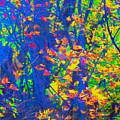 Forest Foliage Art by Ron Fleishman