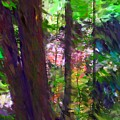 Forest For The Trees by David Lane